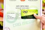 Dịch vụđăng ký nhãn hiệu sản phẩm bánh bao nhân sữa dừa